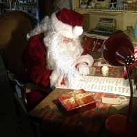professional father Christmas to hire in Newcastle