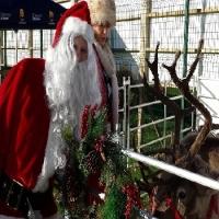 hire-a-santa-birmingham-1