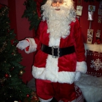 hire-a-santa-for-a-grotto-in-a-department-store
