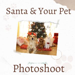 Hire Santa For A Pet Photoshoot